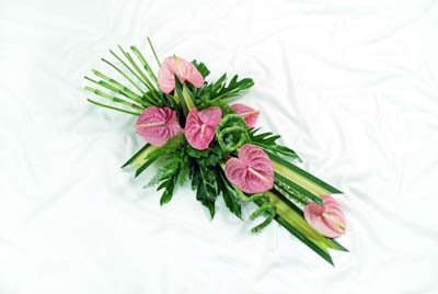 Anthurium sheaf from 35.00