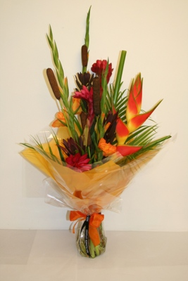 Tropicals from 34.95