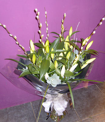 Willow Lilys from 29.95