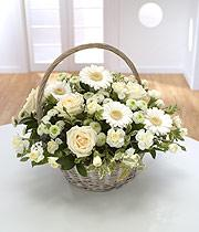 Pure Basket from 29.95