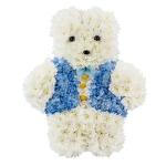 TEDDY BEAR 100.00